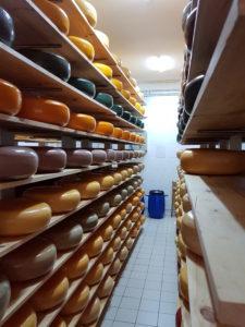тур из Одессы в сыроварню