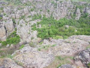 ущелье в Актовском каньоне из Одессы
