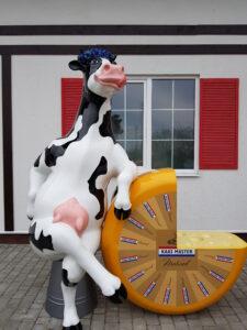 Веселая корова в Шабской сыроварне