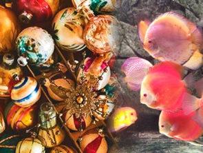 Фабрика ёлочных игрушек с. Клавдиево + океанариум г. Киев «Морская сказка».