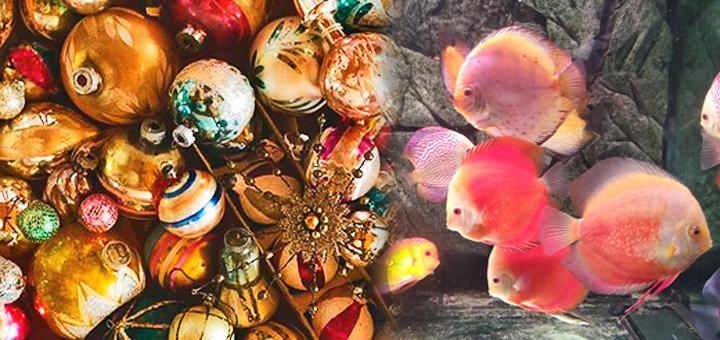 Тур на Фабрику ёлочных игрушек из Одессы.
