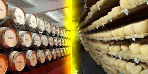 Тур Шабская сыроварня и дегустация вина Шабо.