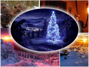 Тур в Карпаты на новый год Воловец