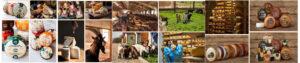 Тур из Одессы в Карпаты с. Угерсько на молочную ферму Прикарпатья «Мукка»