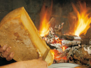 Горячая дегустация сыров на Шабской сыроварне.