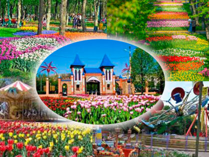 Парк тюльпанов в Кропивницком